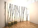 16_birch_curved_hallway[1].jpg