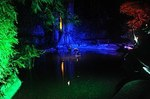 271px-Butchart_Gardens_At_Night[1].jpg