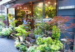 store_shibuya_1[1].jpg