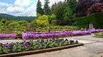 Butchart_Gardens_-_Italian_Garden[1].jpg